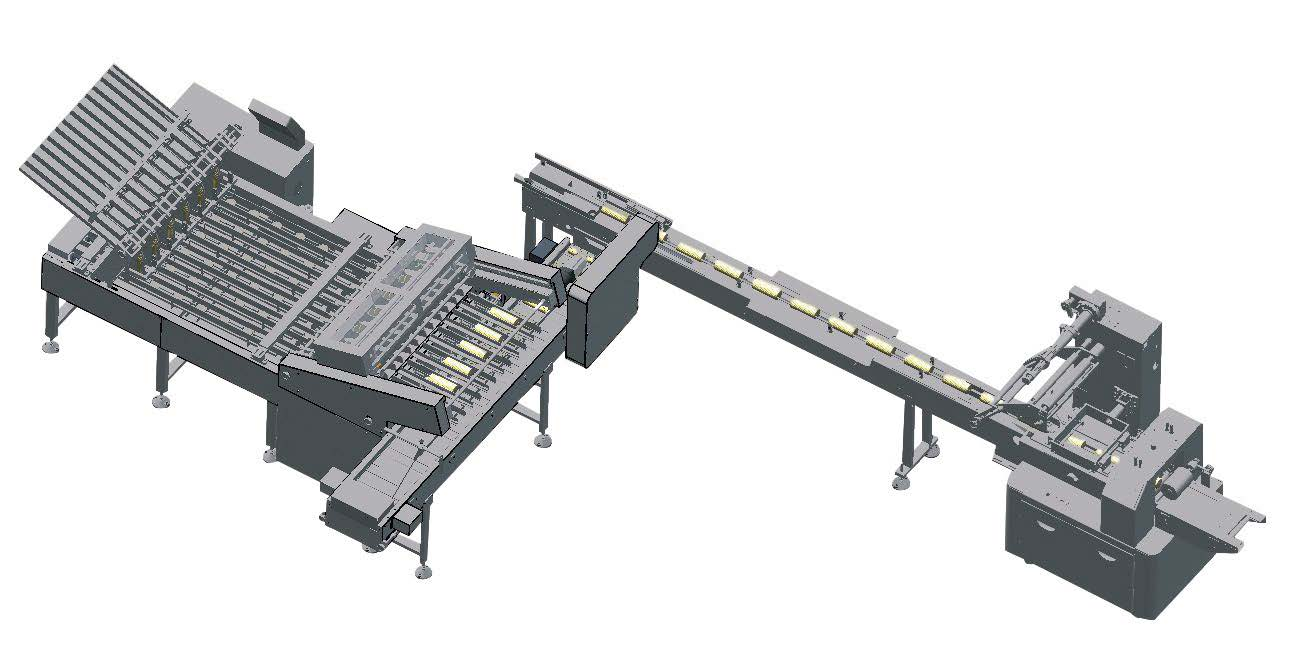cookie biscuit counting and packaging system