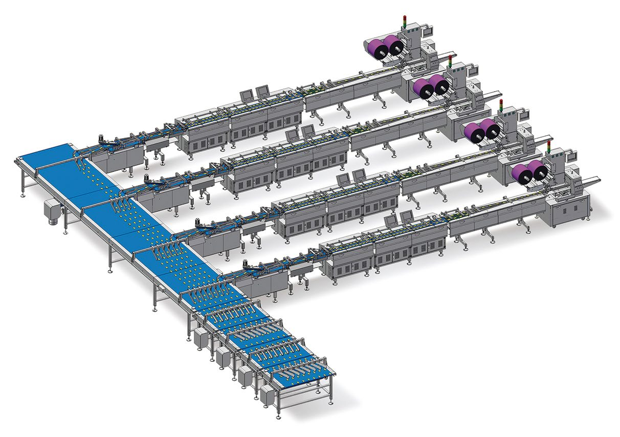 double channel packaing line for biscuit
