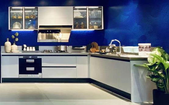 Fadior Stainless Steel Kitchen - FN001 Bona