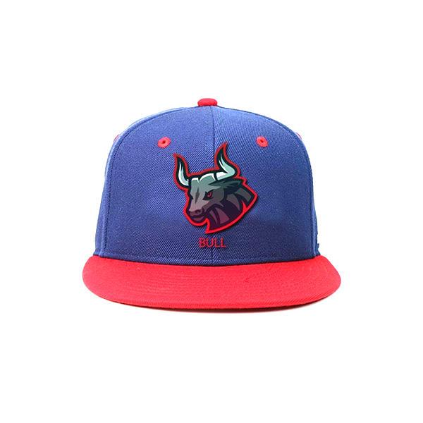 ACE Custom Made Snapback Caps Hip Hop Wholesale Blue Red 100% Cotton Plain Snapback Caps 3D Embroidery Flat Hat